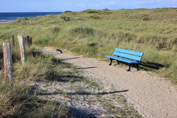 Wanderweg durch die Dünen der Nordsee